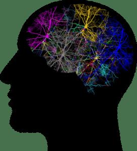 lasneuronas