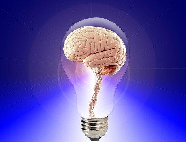 cerebro dentro de una bombilla